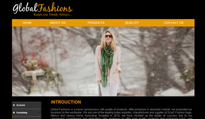 Website for Globlal Fashions