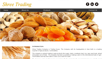 Website for Shree Trading Company